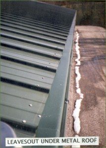 LeavesOut Gutter Cover on a Metal Roof